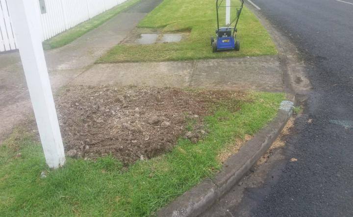 Leak reinstatement in Auckland