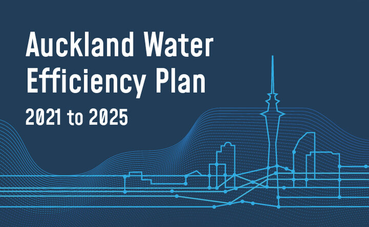 Auckland water efficiency plan