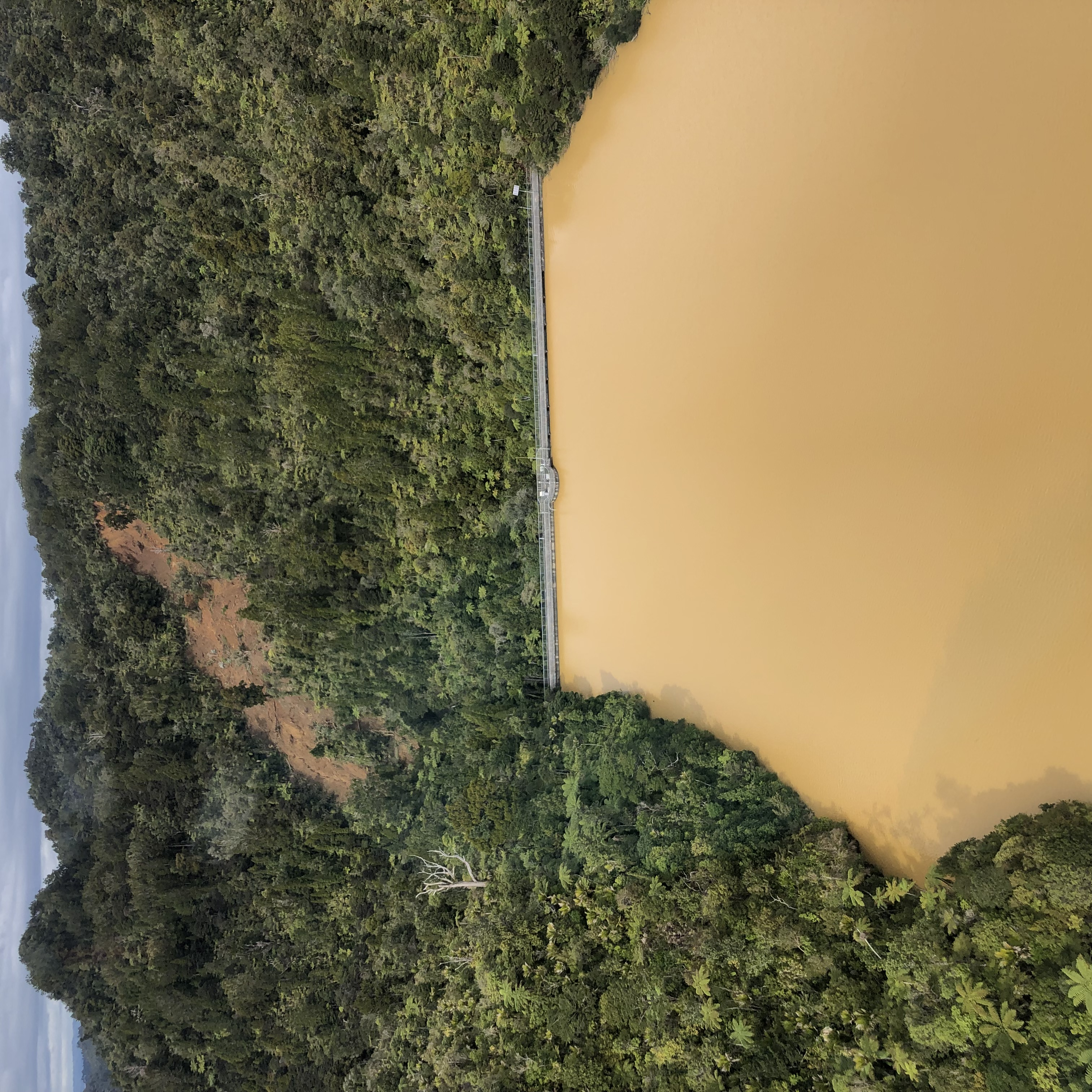 Photo of murky water in Upper Huia Dam and a large slip.