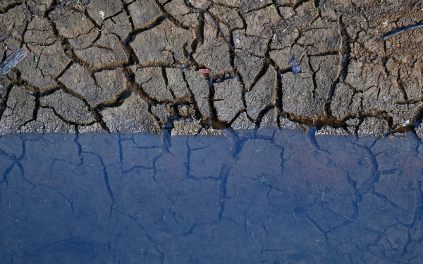 Latest weather forecast takes Auckland water supply to 'critical' status